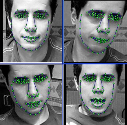 Consider, facial sample video idea